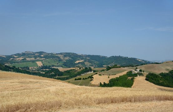 Price reduced. Farmhouse to be restored in Force, Le Marche
