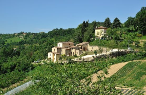Excellent investment with quick return. Country house for sale in Urbino