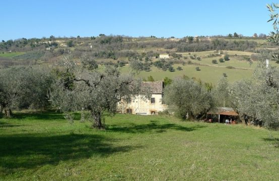Rustic farmhouse in Campofilone, Marche