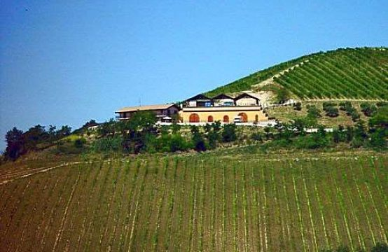 Certified organic farm with 32 hectares in Marche