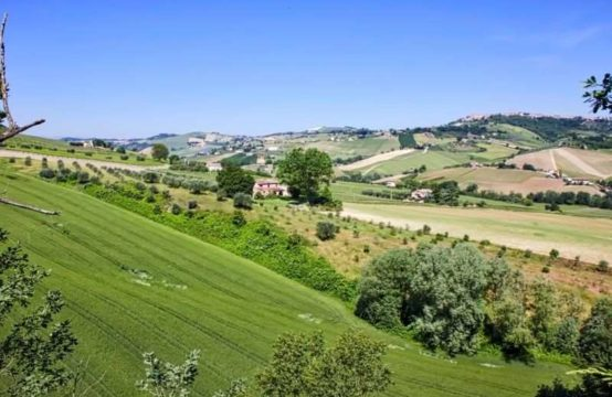 Certified Organic Farm for Sale in Le Marche