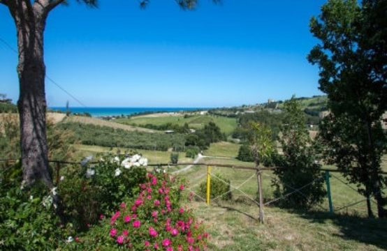 PRICE REDUCED. 5 bedrooms restored farmhouse for sale Marche, beautiful sea view
