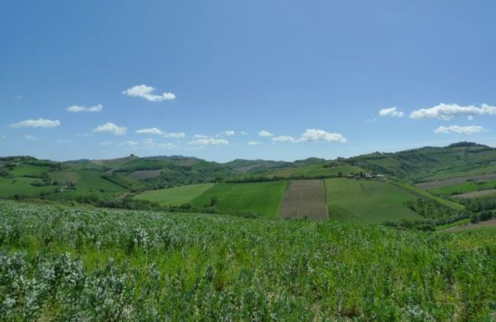 Farmhouse to restore with 22  hectares of land for sale in Montalto delle Marche