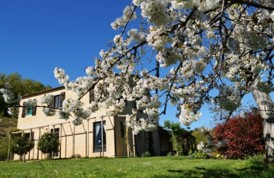 Farmhouse  with garden, pool, wonderful treehouse and 6 HA of land for sale in Le Marche