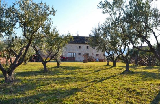 Agriturismo for sale in Le Marche including all licences, with land from 1 hectare up to 30 hectares.