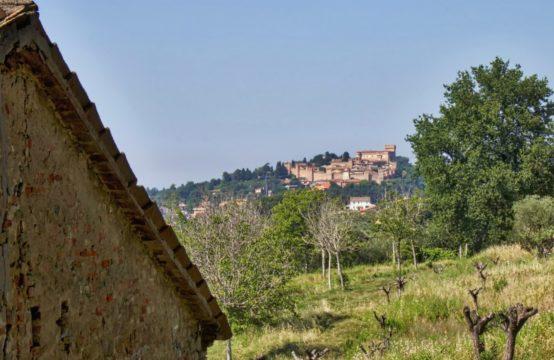 COUNTRY HOUSE TO RENOVATE – GRADARA CASTLE