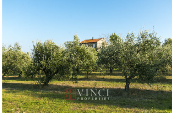 Casale Roberto with 6,5 Ha of land and olive trees
